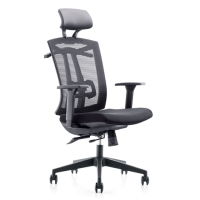 [bulk purchase] Professional office mesh chair
